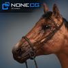 04 17 58 621 horse 02 4