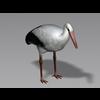 04 20 12 855 stork3 4