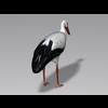 04 20 13 327 stork5 4