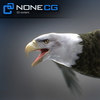 04 20 52 359 eagle bald 01 4