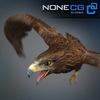 04 20 53 478 eagle golden 03 4