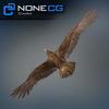 04 20 53 648 eagle golden 05 4