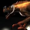 04 22 18 71 dragonrider4 4