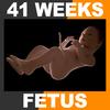 04 25 59 739 embryofetuspack th057 4