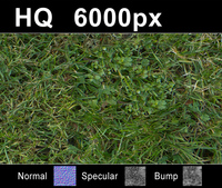 Lawn 5 - High Res Set
