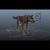 04 28 59 894 wolfdog 002 4