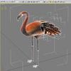 04 30 09 260 flamingo w3 4