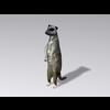 04 30 15 350 meerkat1 4