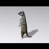 04 30 15 663 meerkat2 4
