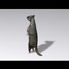 04 30 15 789 meerkat3 4