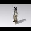 04 30 16 262 meerkat7 4