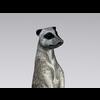 04 30 17 852 meerkat8 4