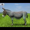 04 34 07 407 donkey 480 0002 4