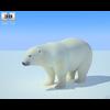 04 34 10 959 polar bear 480 0001 4