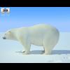 04 34 11 95 polar bear 480 0002 4