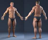 Male Bodybuilder 3D Model