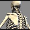 04 40 54 526 spine 4