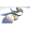 Nautilus Seashell 3D Model