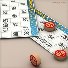 Bingo Game 3D Model