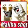 04 44 45 223 malibu shot 0 4