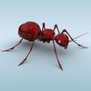 04 45 08 391 mechanical ant 01 4
