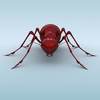 04 45 08 455 mechanical ant 02 4