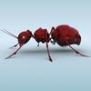 04 45 08 526 mechanical ant 03 4