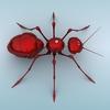 04 45 08 799 mechanical ant 06 4