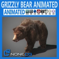 Animated Grizzly Bear 3D Model