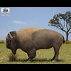 05 18 41 620 bizon 480 0002 4