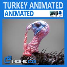 Animated Turkey
