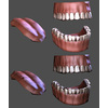 05 29 04 827 teeth lowpoly high detail 4