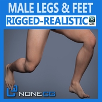 Adult Male Legs and Feet 3D Model
