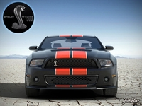 Shelby GT500 2010 std mat 3D Model
