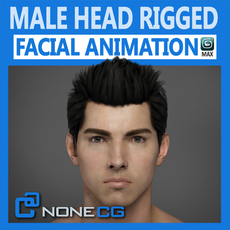Adult Male Head Rigged 3D Model