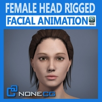 Adult Female Head Rigged 3D Model