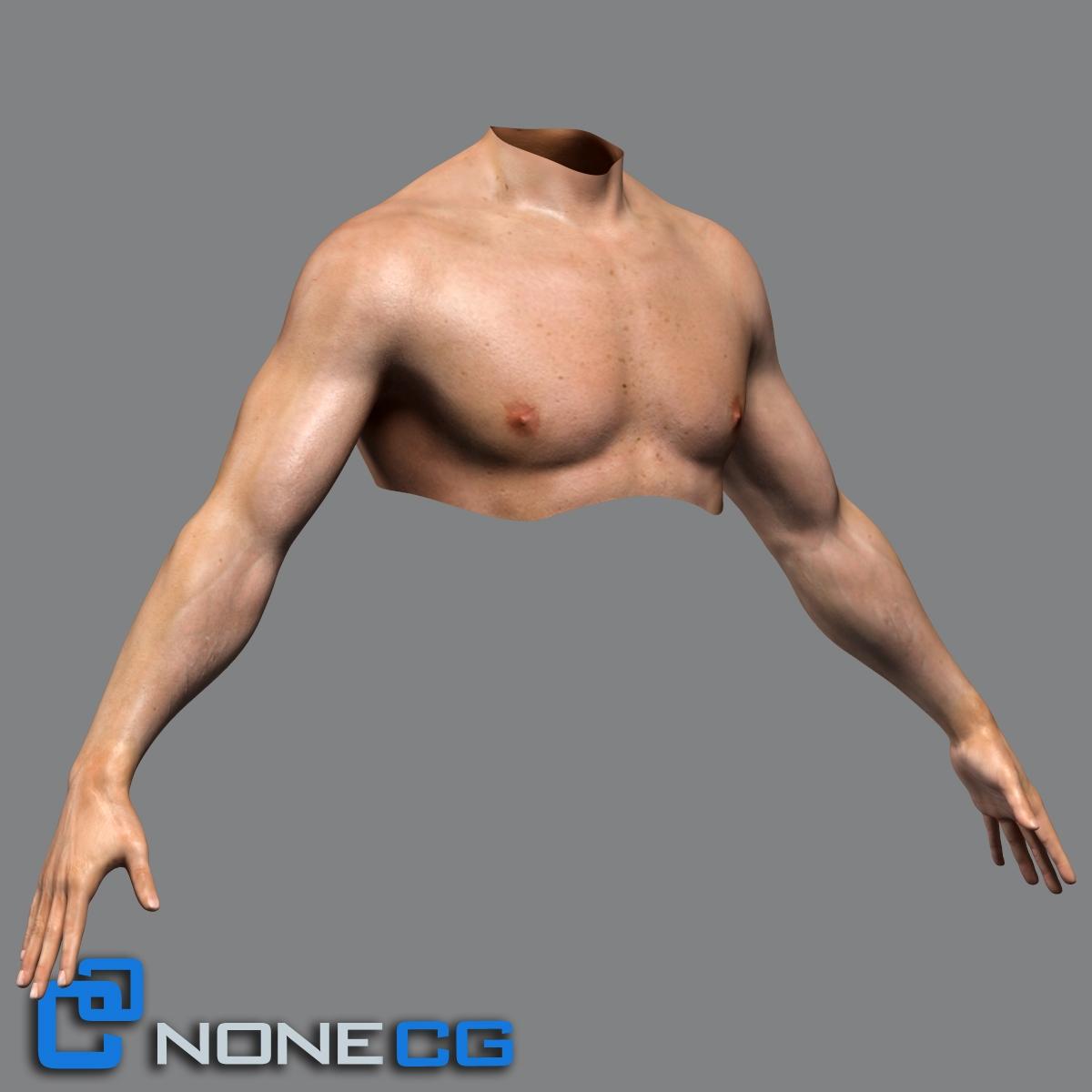 3d male adult