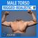 Adult Male Torso Rigged 3D Model