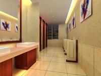 Public Toilet 008 3D Model