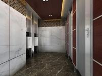 Public Toilet 015 3D Model