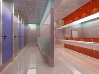 Public Toilet 018 3D Model