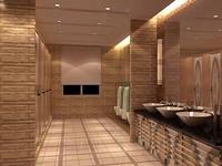 Public Toilet 019 3D Model