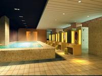 SPA Room 008 3D Model