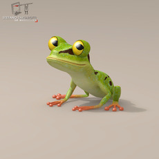Frog cartoon character 3D Model
