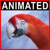 06 17 34 430 parrot2 0000 4