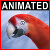06 17 35 77 parrot2 0000 4