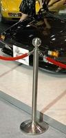 Museum Rope 3D Model
