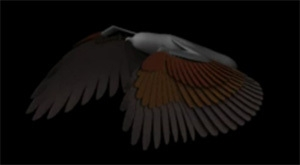 Wing Creator - UPDATE Version 2 0 for Maya