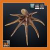 06 30 58 988 sample octopus 4 4