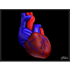 06 33 17 480 heart 09 4